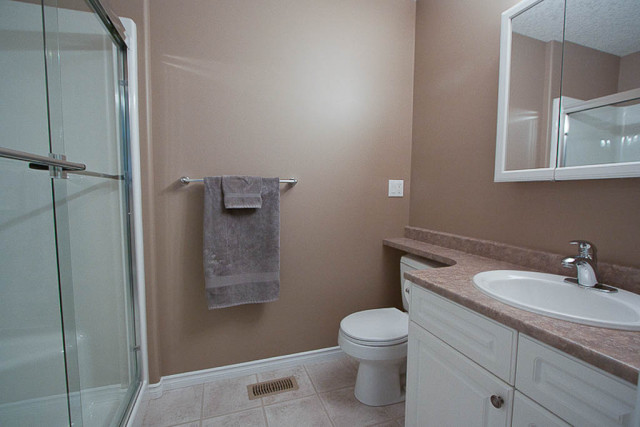 ensuite bathroom painted mocha brown colour